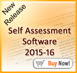 Andica Self Assessment  Software 2015-16